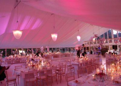 A glamorous fairytale wedding in the wineland at the Vergelegen Wine Estate
